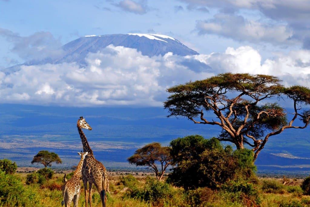 Туры в Танзанию из Казани