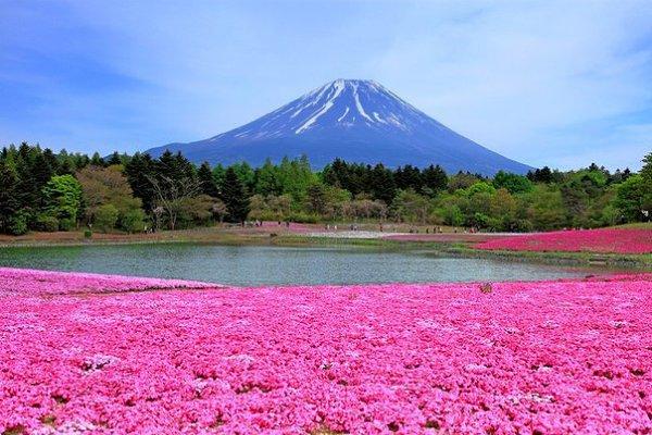 Туры в Японию из Казани