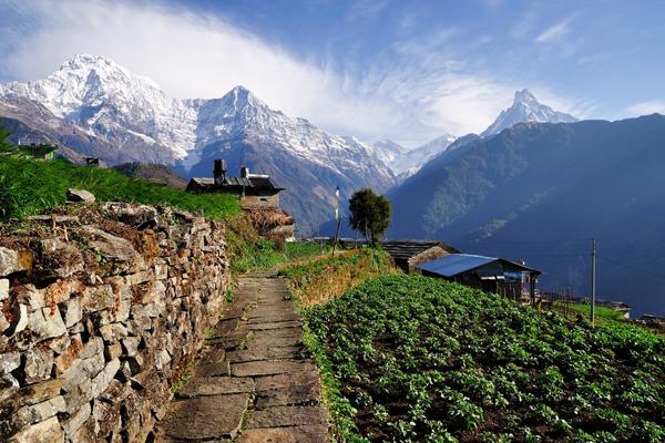 Туры в Непал из Казани